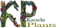 Karachi Plants